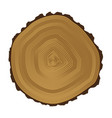 tree brown rings background and saw cut tree trunk vector image