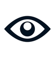 eye symbol isolated icon vector image