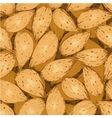 shelled almonds vector image vector image