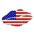 American lips vector image
