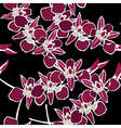 Floral seamless pattern with orchids hand-drawing vector image