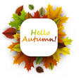 hello autumn card with colorful leaves vector image