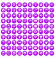 100 elephant icons set purple vector image