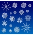 Collection of Various Snowflakes vector image