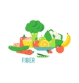 Vegetables food cellulose set vector image