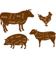 Beef pork chicken and lamb meat cuts vector image