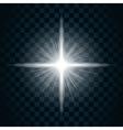 sparkle light star 10 vector image