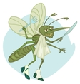 mosquito the gourmet vector image