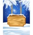 Winter Night Landscape Wooden Board vector image