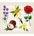 Collection of colorful flowers vector image vector image