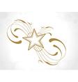 floral star design vector image