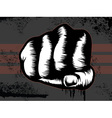 hand punch vector image