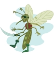 mosquito the pirate vector image