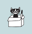 cheerful cat sitting in carton box against light vector image