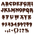 Chocolate alphabet isolated on white background vector image