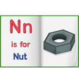 A picture of a nut in a book vector image vector image