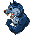 Cartoon of strong wolf character isolated vector image