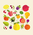 color fruit vector image