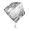 Opaque ice cube vector image