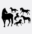 Horse silhouettes vector image