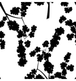 Seamless pattern with black cherry flowers vector image