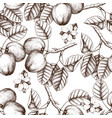 seamless pattern with apple sketch vector image