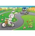 vehicles rabbit turtur background vector image