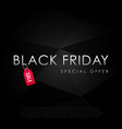 black friday special offer inscription design vector image