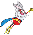 Super hero rabbit cartoon vector image