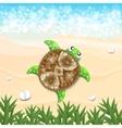 Beautiful turtle vector image