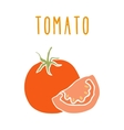 Tomato isolated on white vector image