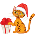 Tabby red cat gives a gift vector image vector image