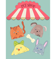 Cute pet shope vector image