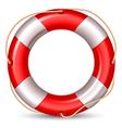 Lifebuoy vector image
