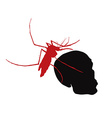 Red mosquito hold on human skull vector image