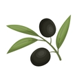 Branch of olives icon in cartoon style isolated on vector image