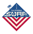 California west coast surfers Pacific Ocean team vector image