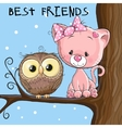 Owl and Kitten vector image