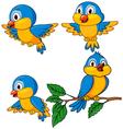 Cute Bird Cartoon vector image
