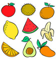 doodle of fruit element colorful vector image