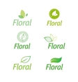 floral set of leaf green eco icons vector image