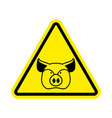 Warning pig swine on yellow triangle road sign vector image