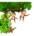 happy monkey cartoon hinging vector image