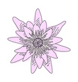 Sketch of flower lotus vector image