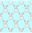 white rabbit on blue mint background vector image