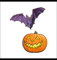 halloween symbols - pumpkin jack o lantern and vector image