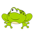 Cartoon sitting frog Isolated vector image