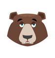 bear sad emoji grizzly melancholy emotion face vector image