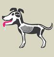 Dogs Bone Marrow vector image