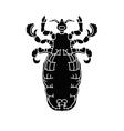 lice1 04 vector image
